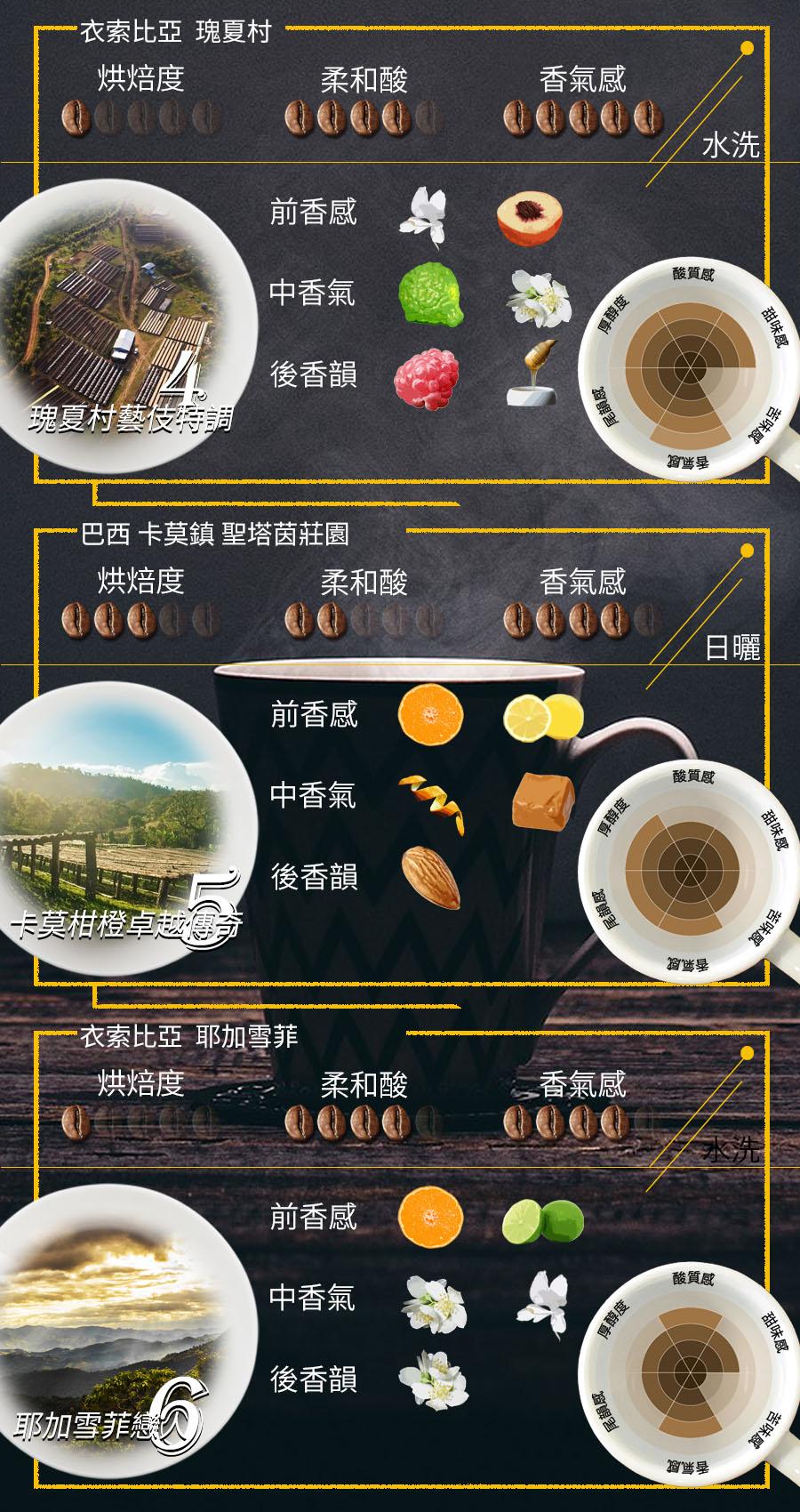 達人推薦B款-六款精選風味禮盒(12入)【女子妍妍 精品咖啡】